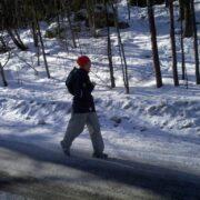 Random image: Ulla på väg hem från rundan runt Edsviken